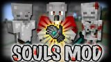 Souls Mod 1.12.2/1.11.2 Download