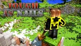 Tough As Nails Mod 1.12.2/1.11.2 Download