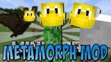 MetaMorph Mod 1.12.2/1.11.2 Download
